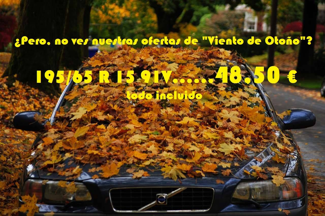 https://valleros.eu/wp-content/uploads/2016/11/Hojas-en-Viento-de-Otoño.jpg